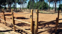 Fence for riding centre